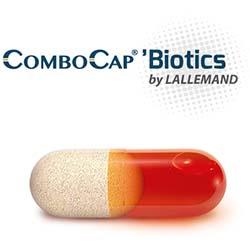 ComboCap logo&image